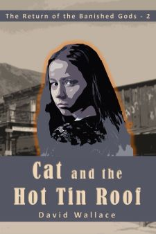 cat and the hot tin roof cover