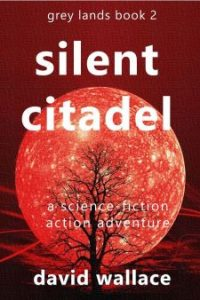 silent citadel cover
